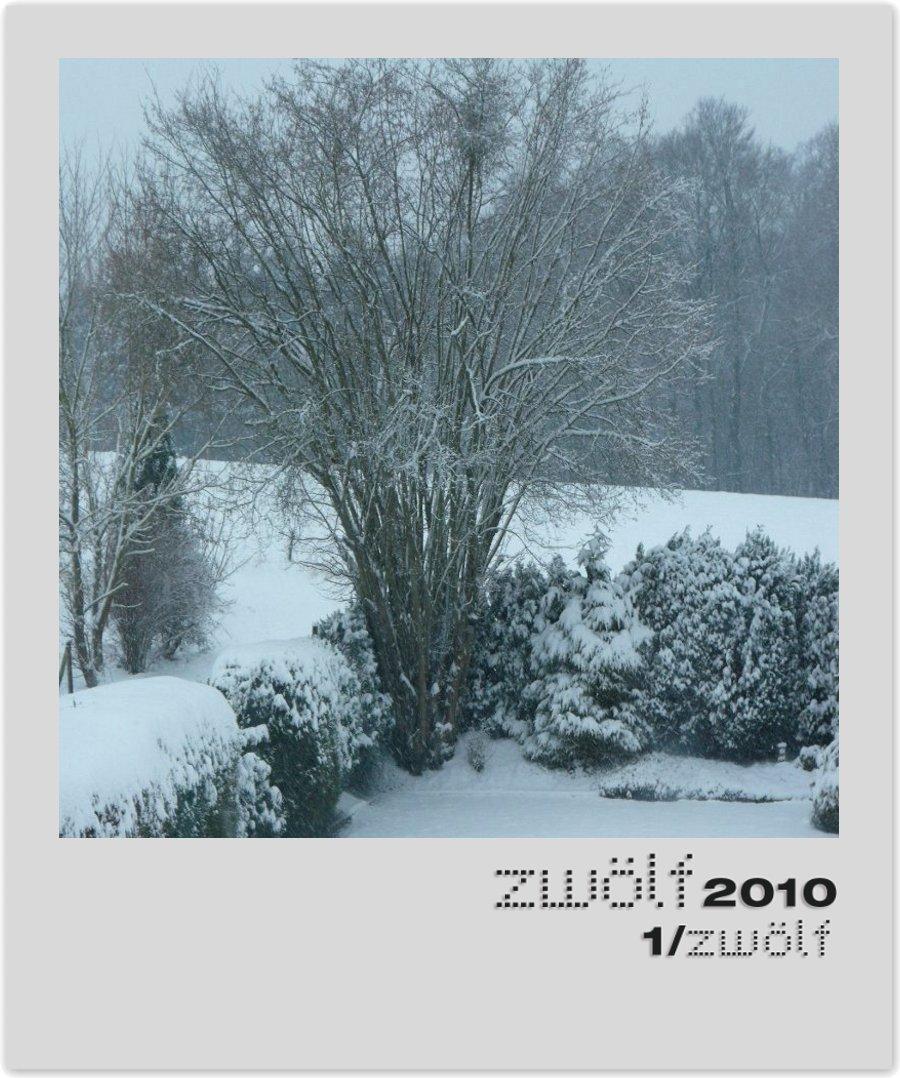 Foto Januar zwölf2010